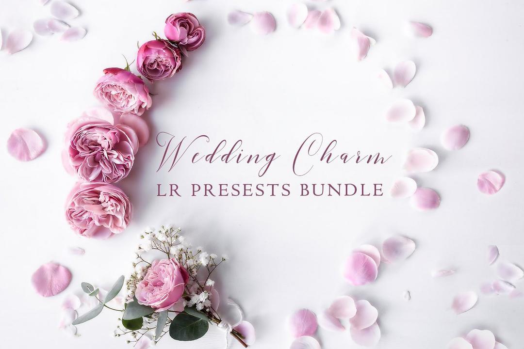 500+ Wedding Charm LR Presets Bundle 2259456