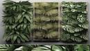 植物墙C4D模型 CGTrader – Vertical Garden 1 3D model-缩略图