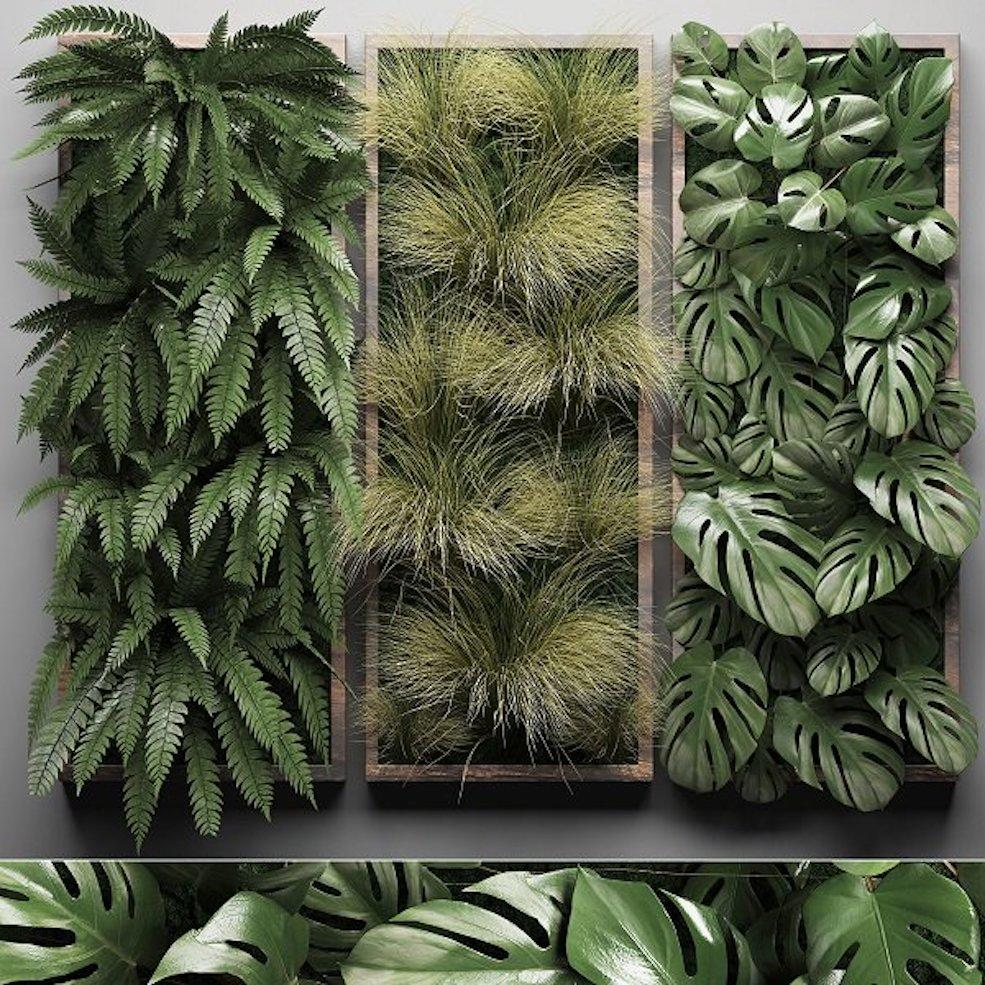 植物墙C4D模型 CGTrader – Vertical Garden 1 3D model