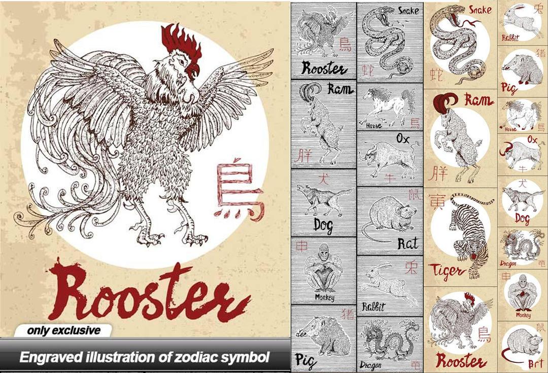 十二生肖矢量图12生肖动物矢量素材 Engraved illustration of zodiac symbol - 24 EPS
