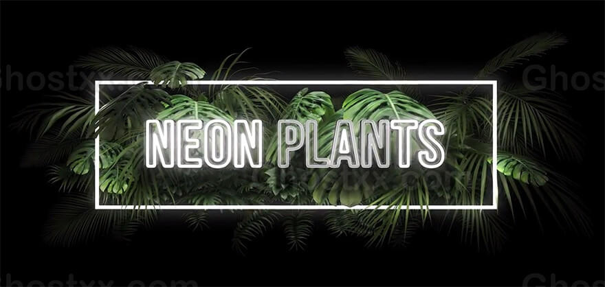 Neon Plants After Effects Text or Logo Intro Template霓虹植物效果After Effects文字或标志介绍
