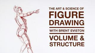 The Art Science of Figure Drawing  VOLUME STRUCTURE