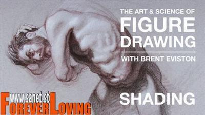 The Art  Science of Figure Drawing Shading
