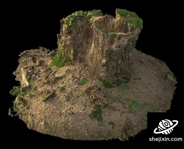 Old Stump with moss 03 3D-Scan 青苔枯树桩3D模型
