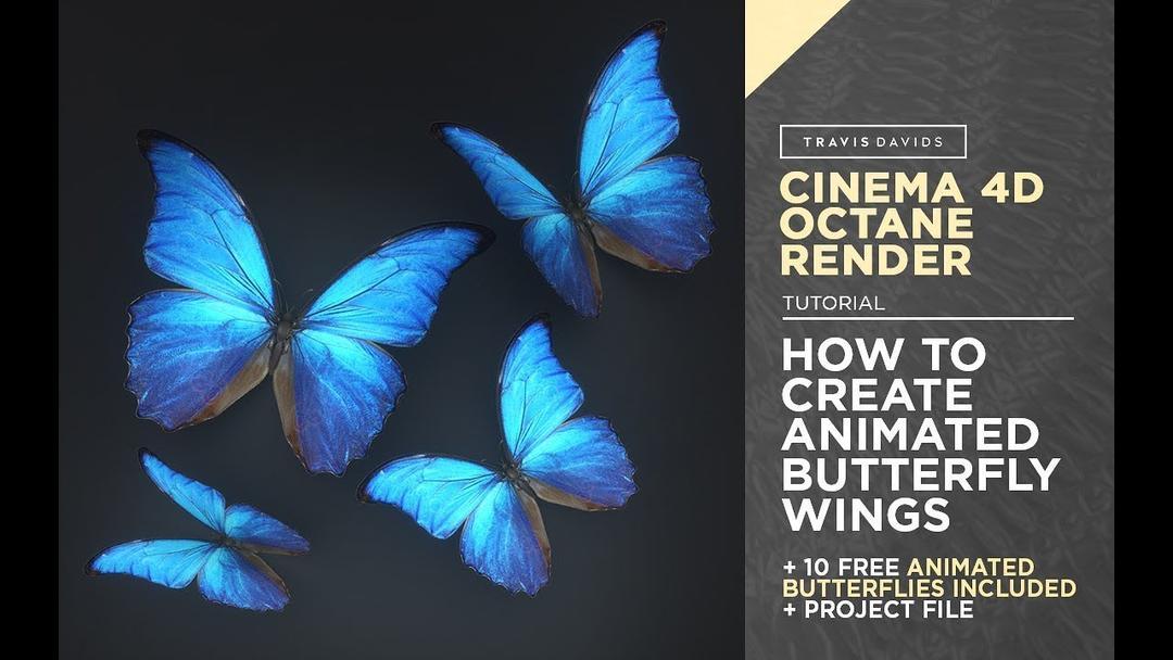 C4D制作飞行中的蝴蝶抖动翅膀动画渲染Octane渲染器教程(含工程)