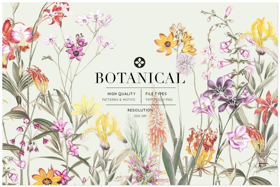 Botanical Luxury Patterns Motifs 4308866 水彩花卉包装背景 鲜花插画背景