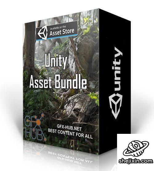 Unity Asset Bundle 1 – June 2020