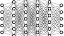 The Complete Neural Networks Bootcamp: Theory, Applications-缩略图