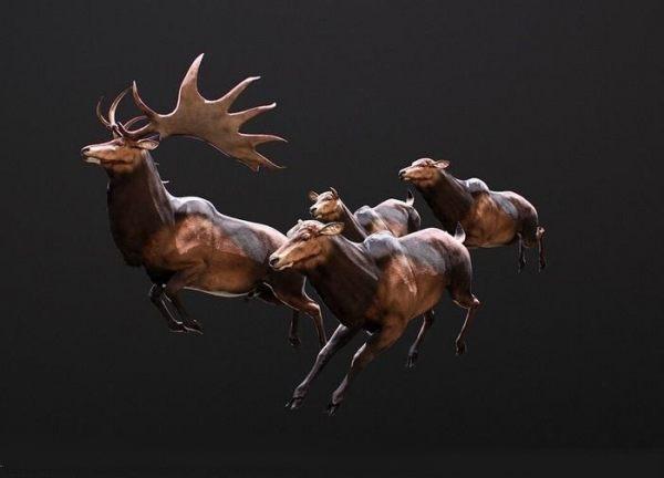 Megaloceros giganteus PBR 雄性麋鹿模型 麋鹿雕塑模型