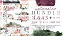 Watercolor Bundle - Designer Deal 优质植物花卉水彩素材-缩略图