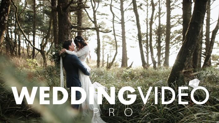 Full Time Filmmaker - Wedding Video Pro全职电影制片人 - 婚礼视频专业课程 2020-9月更新