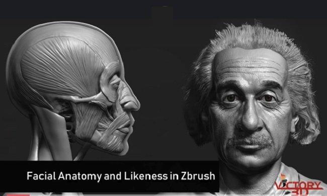 Zbrush Facial Anatomy and Likeness Character Sculpting