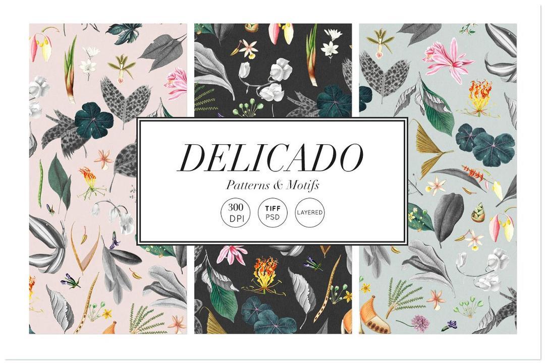 Delicado Exquisite Pattern Motifs 5740462 精美精致图案插画  包装盒纹理