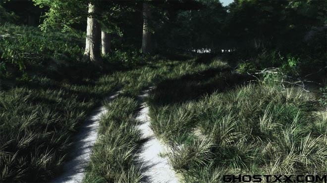 Vue场景 - Walk in Forest