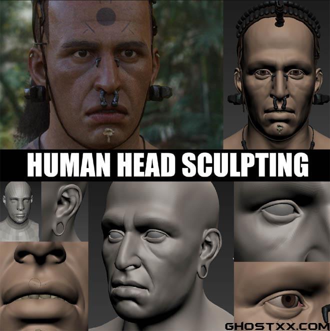 Gumroad - 人类头部雕刻建模教程